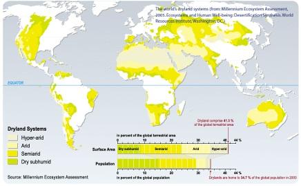 E13 Soil Arrangement Technologies To Fight Against Desertification